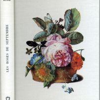 Anne Lauricella maurois roses de septembre